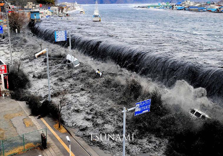 Tsunami-Tamil