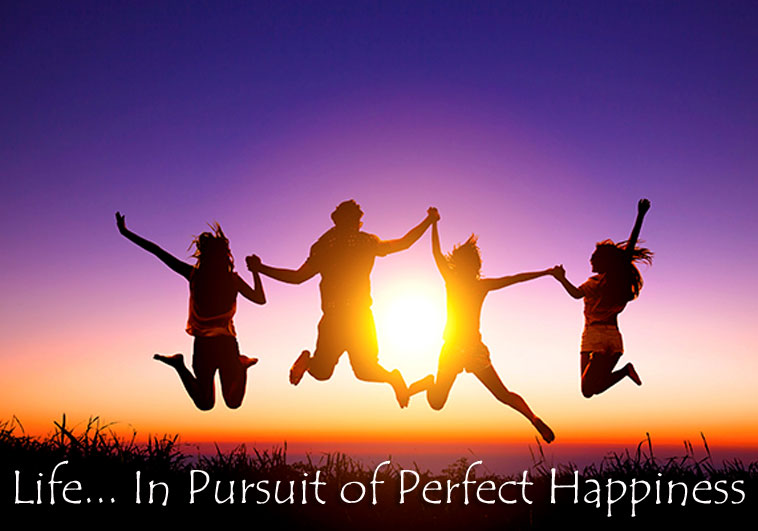 Life… In Pursuit of Perfect Happiness